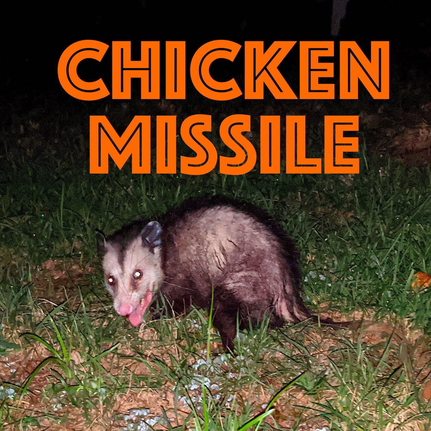 Chicken Missile